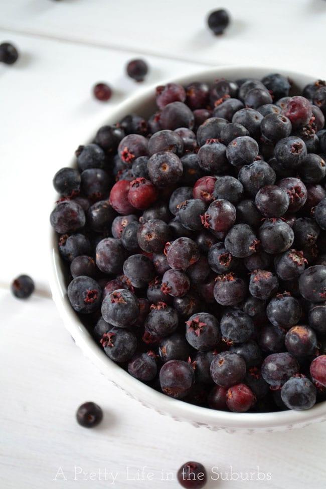 Saskatoon Berries {A Pretty Life}