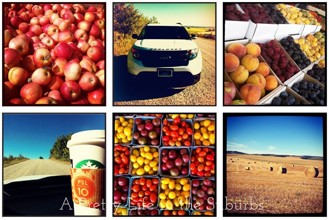 Fall-a-{A-Pretty-Life}