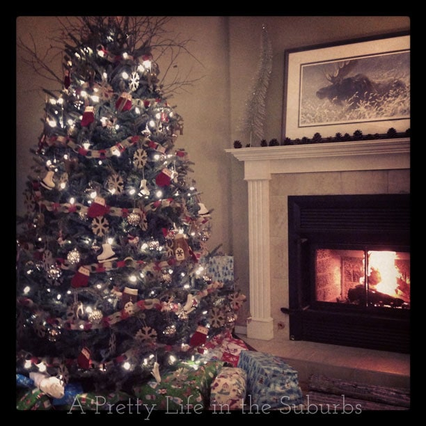 Christmas-2013-6{A-Pretty-Life}