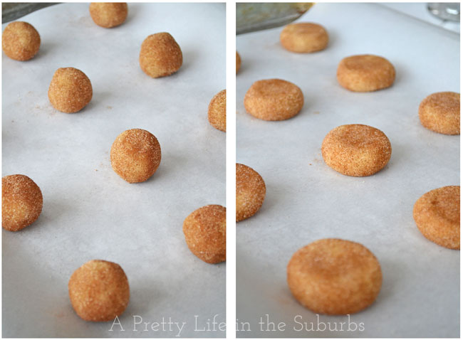 Snickerdoodles-{A-Pretty-Life}3