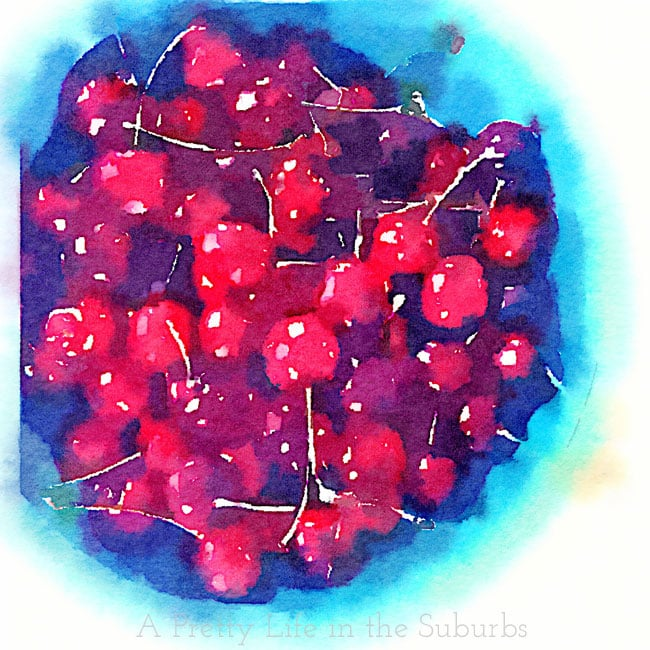 Bowl-of-Cherries-{A-Pretty-Life}