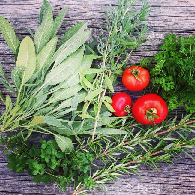 Fresh-Herbs-{A-Pretty-Life}