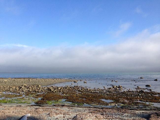 Mussel-Beach-6{A-Pretty-Life}