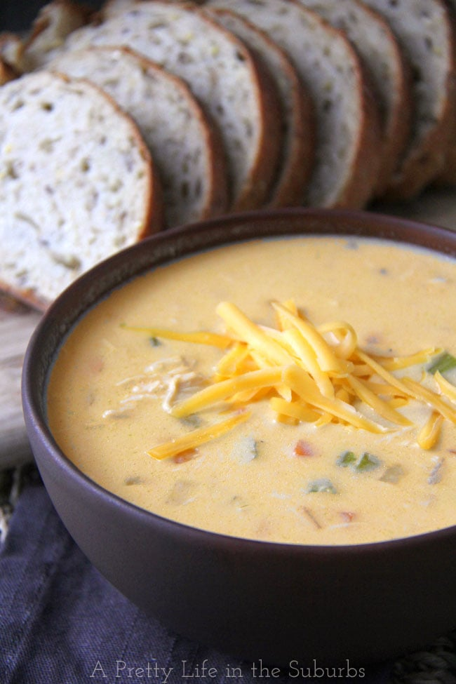 Slow Cooker Cheddar and Ale Chicken Chowder