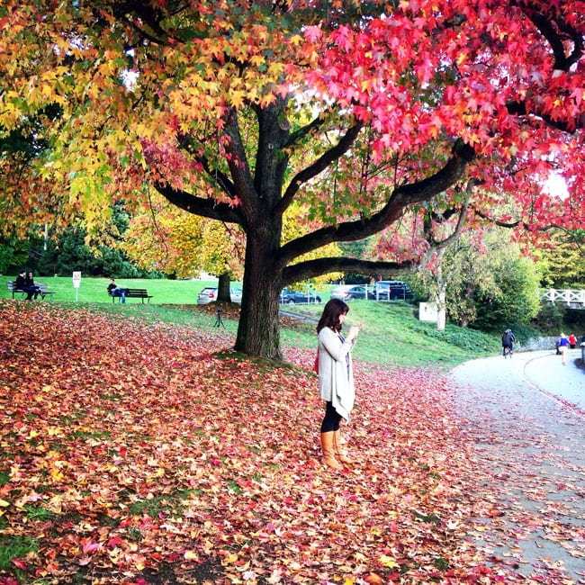 Fall-in-Vancouver