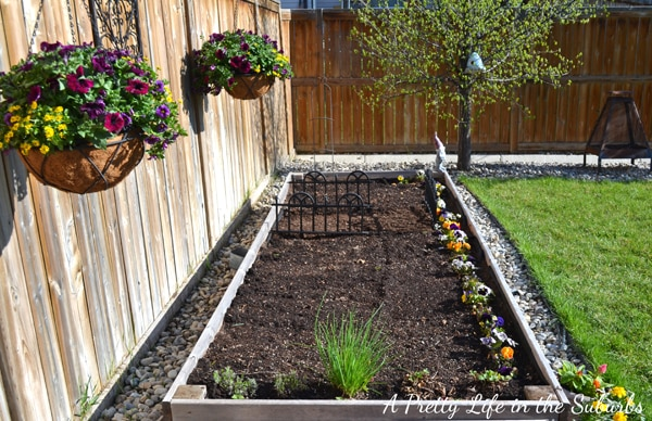 Ve able Gardening in Raised Beds & Containers