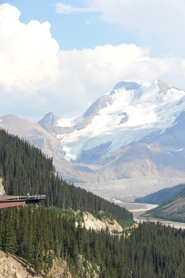 Jasper Glacier Skywalk 2