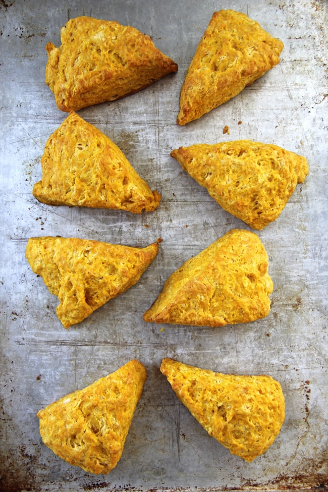 Pumpkin Biscuits {A Pretty Life}