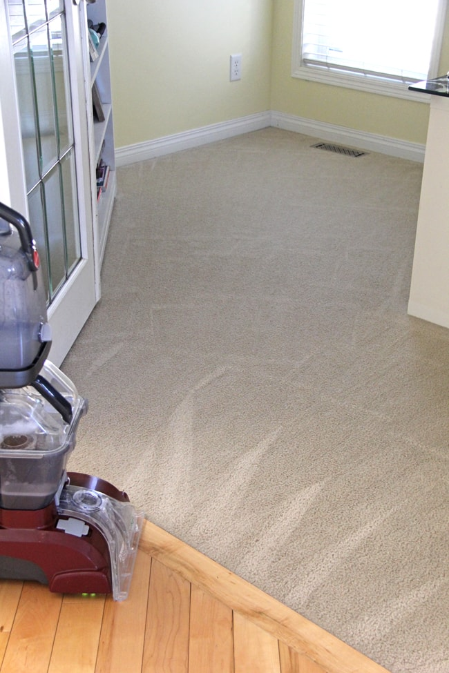 Hoover Power Scrub Carpet Cleaner Review After2