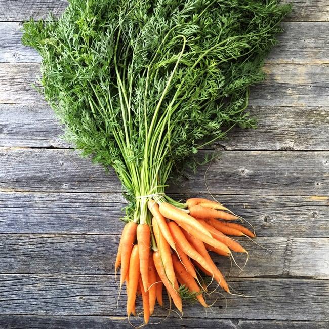 Carrots {A Pretty Life}
