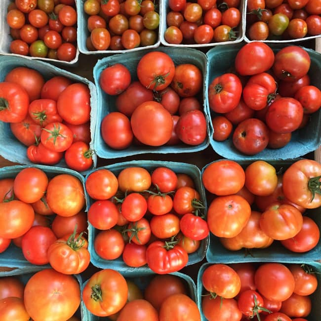 Tomatoes {A Pretty Life}