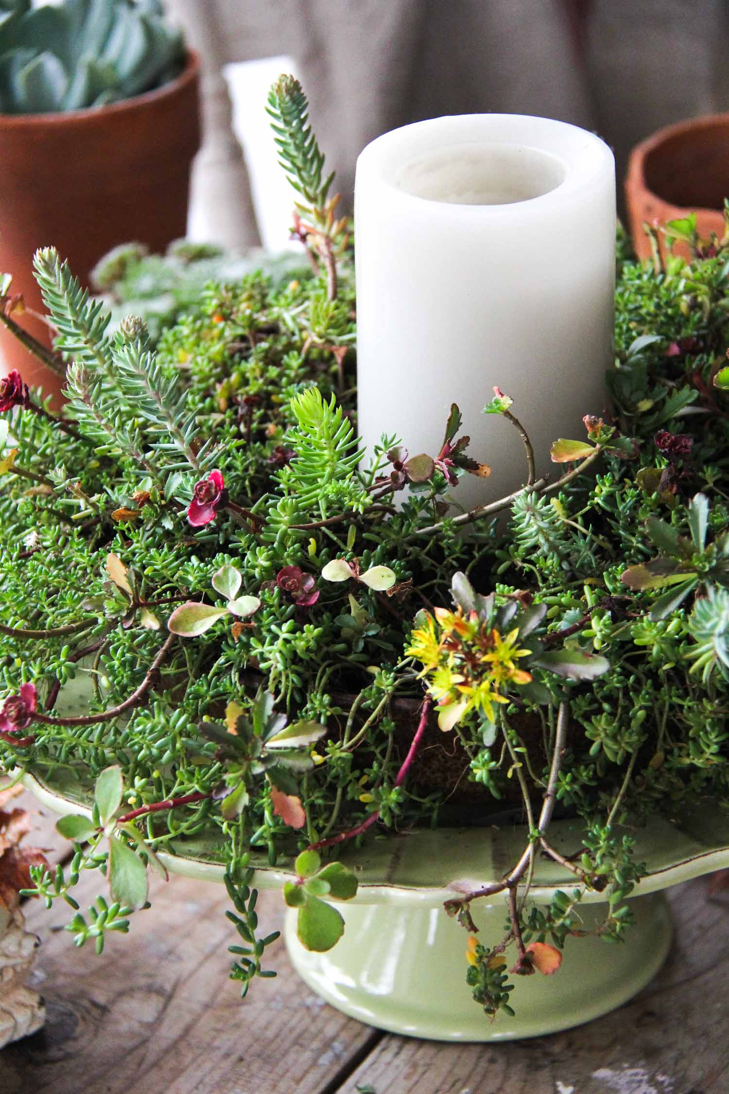 Fall Sedum Candle Centrepiece {A Pretty Life}