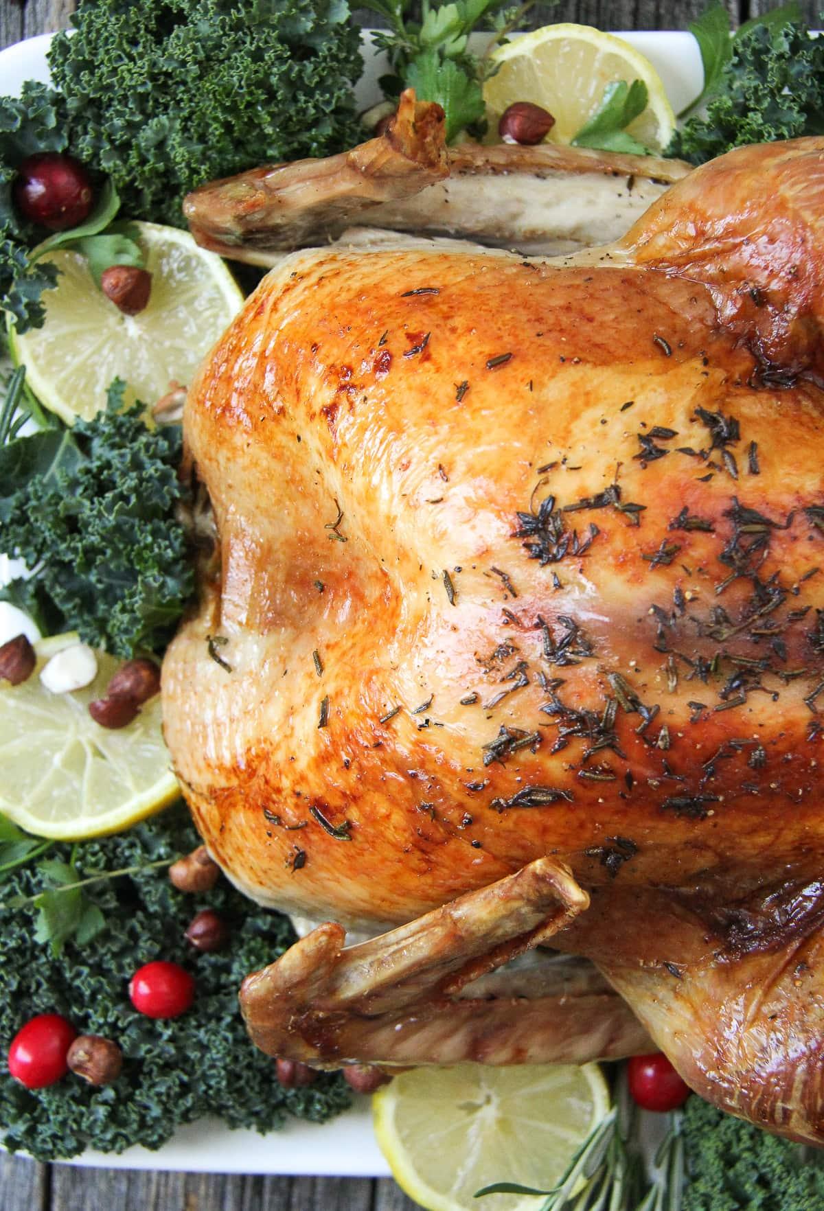 Lemon Rosemary Roasted Turkey