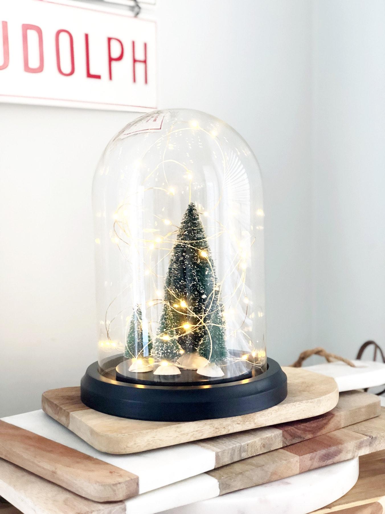 DIY Fairy Light Cloche