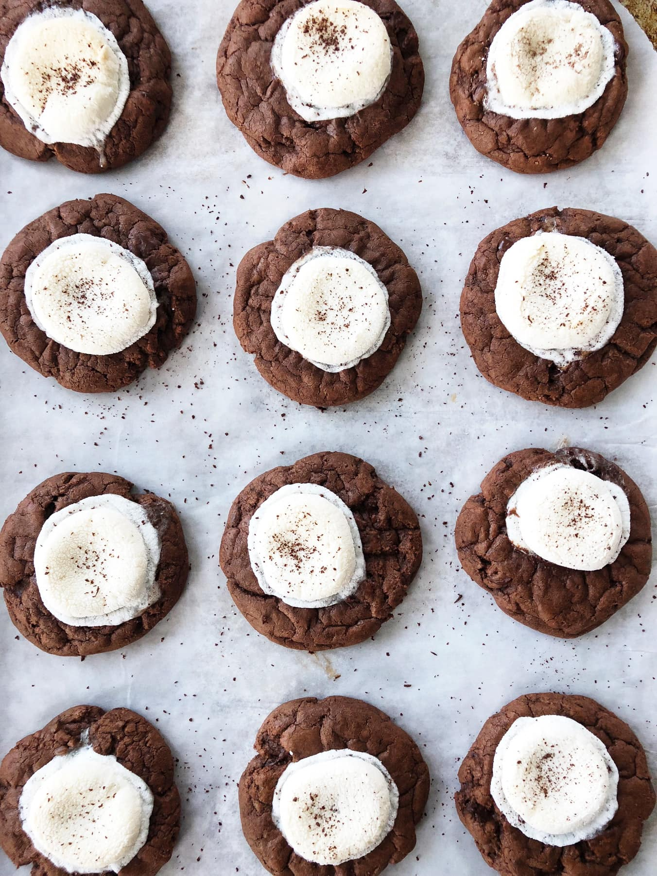 The Most Chocolatey Hot Chocolate Cookies