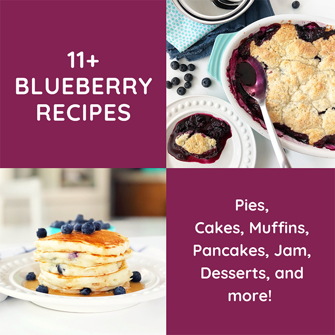 11+ Blueberry Recipes