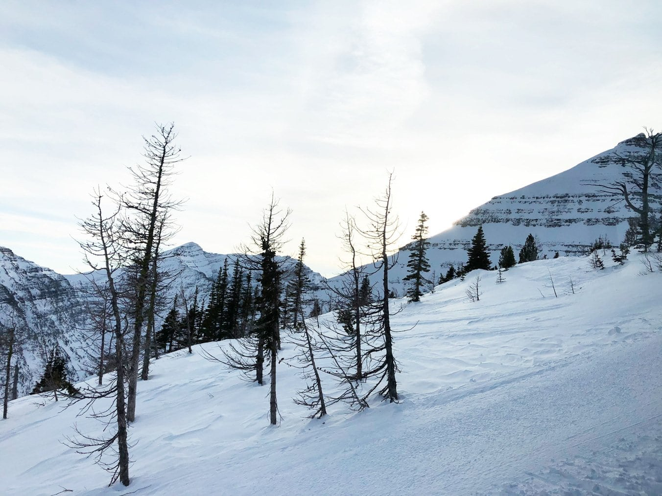 Powder Stagecoach Cat Skiing and Scenic Snow Cat Experience, Castle Mountain