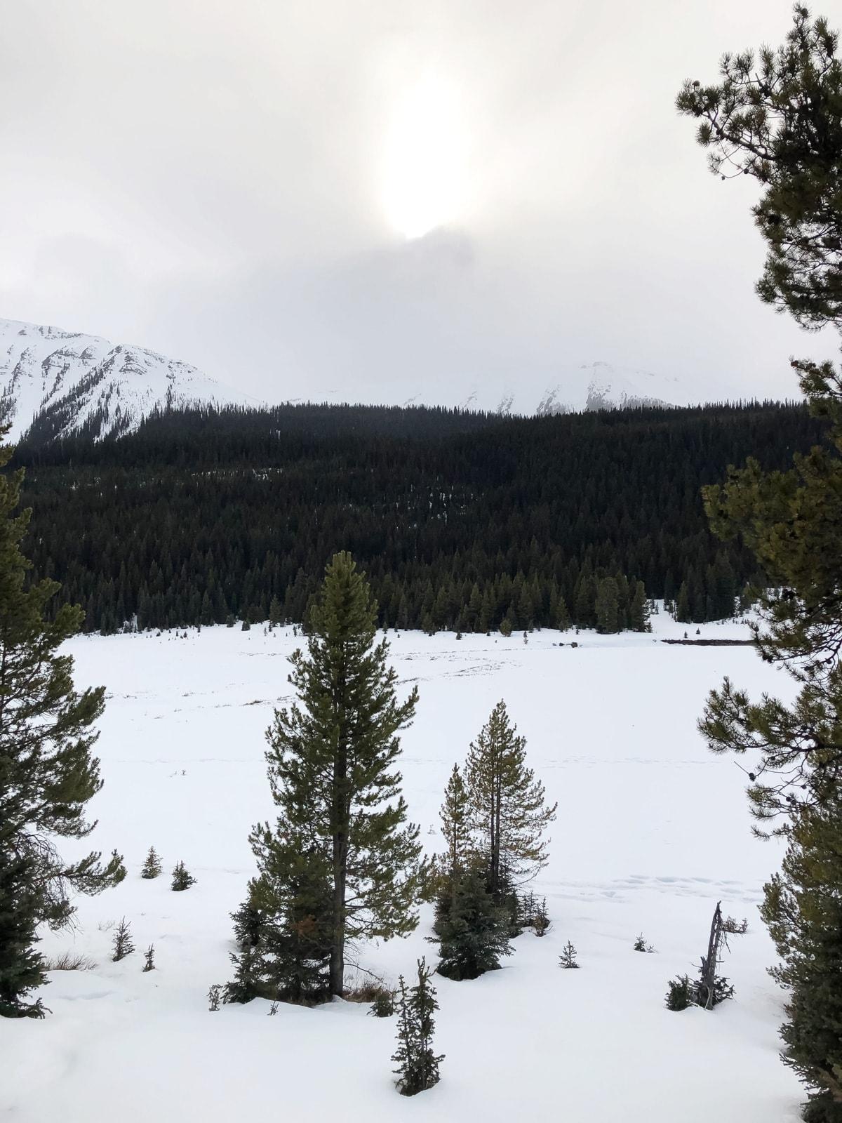 Winter Glamping at Mount Engadine Lodge